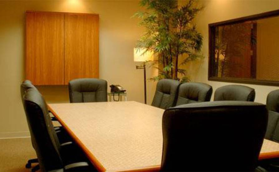 Large Conference Room (10)