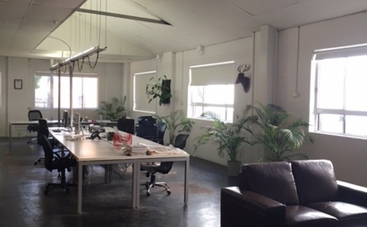 Central Office Space in Chippendale