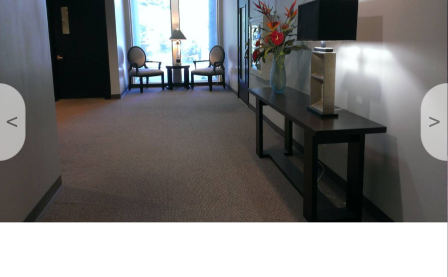 Watt Executive Suites