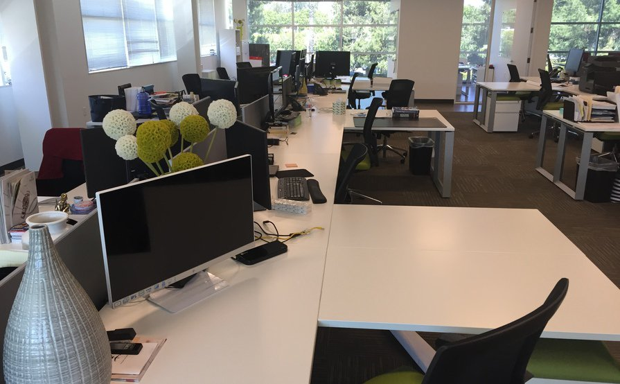 Open Plan Dedicated Desks