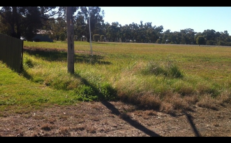 Wide, flat-grassed space perfect for Boat in Ungarie near West   Wyalong #3