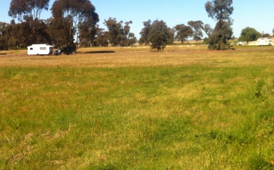 Wide, flat-grassed space perfect for Storage Container in Ungarie near West Wyalong #10