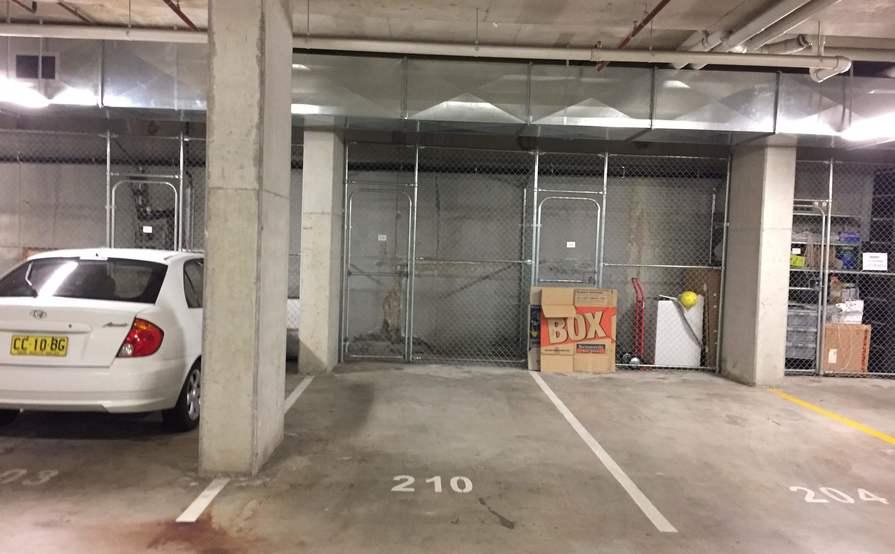 Parking spot in gated garage PLUS storage cage