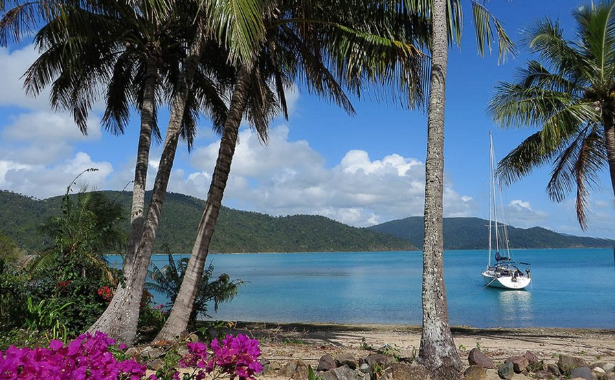 $50.00 MOORING ONLY USE OF RESORT FACILITIES IS $100 FOR 2 PAX THEN $15.00 THEREAFTER