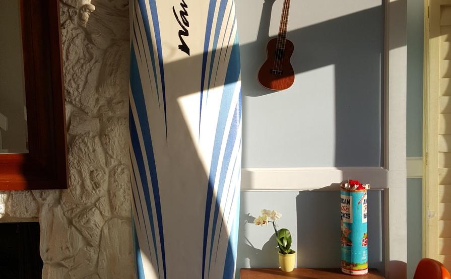 Wavestorm Foamy Longboard