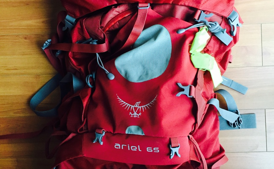 Osprey Ariel 65L Pack - Size Small
