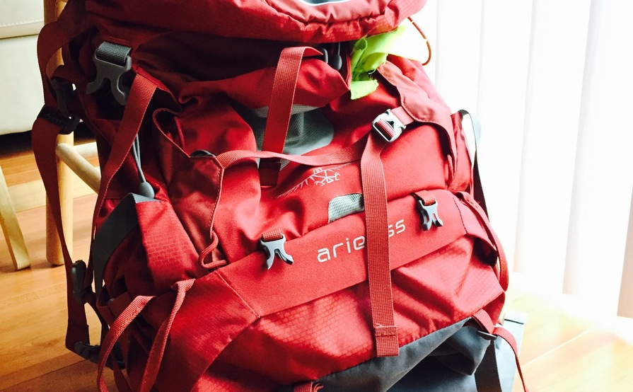 Osprey Ariel 65L Pack - Size Small
