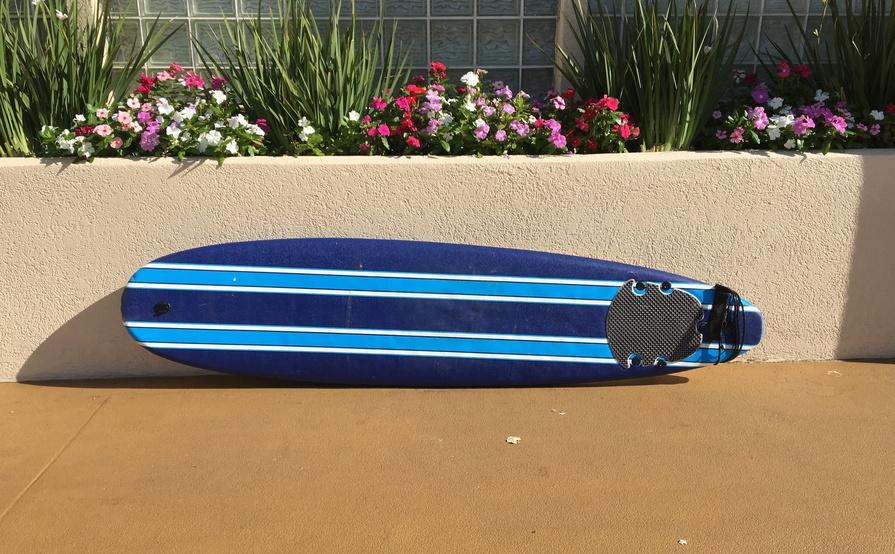 Wavestorm Foam Surfboard