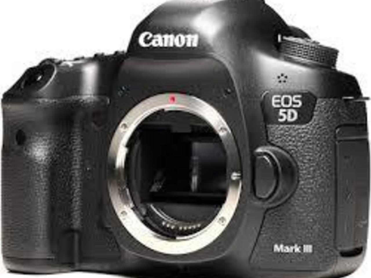 С украденных фотоаппаратов 21 фотография